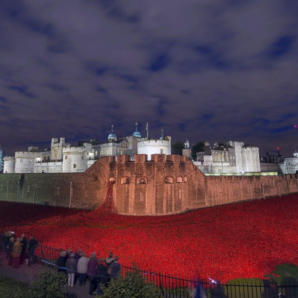 The sea of poppies outside the Tower of London. Photo: UK Ministry of Defence @Flickr