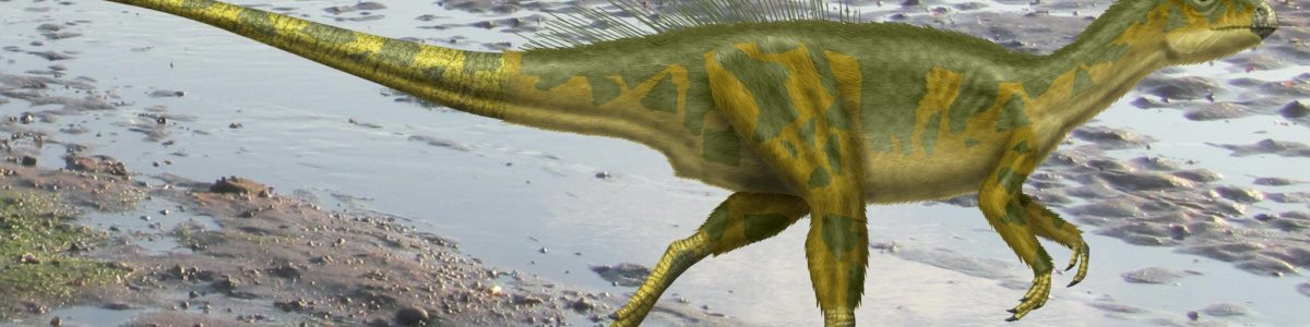 Dinosaurs: how do we know what they really looked like?