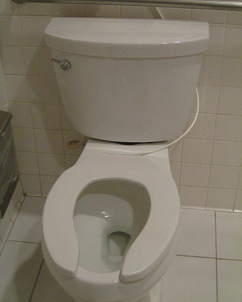 A toilet, yesterday. Photo: Titanas @ flickr