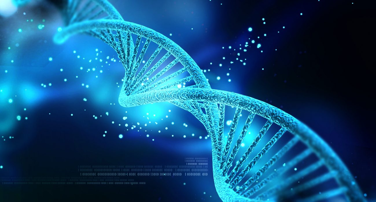 DNA Photo: Nogas1974 @ Wikimedia Commons