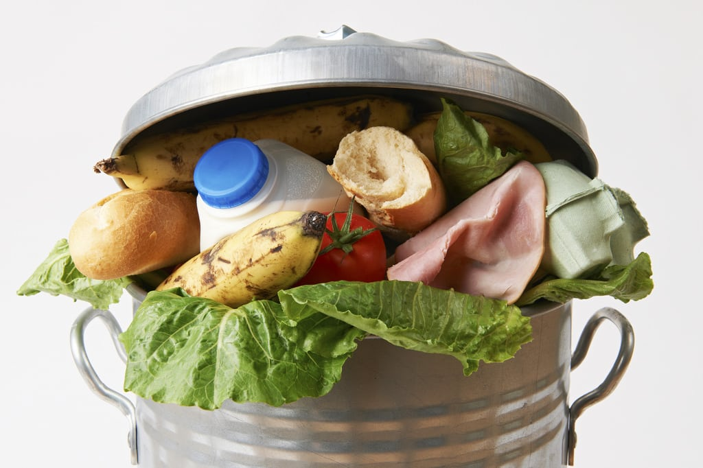 Food Waste. Photo: US Department of Agriculture @ Flickr