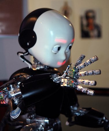 iCub—a humanoid robot testbed currently being used for research into human cognition and artificial intelligence. Photo: Lorenzo Natale @ Wikimedia Commons