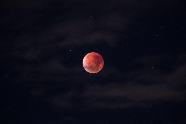 Blood Moon in Autumn