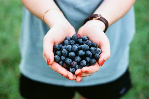 blueberries Photo: Andrew Welch @Unsplash