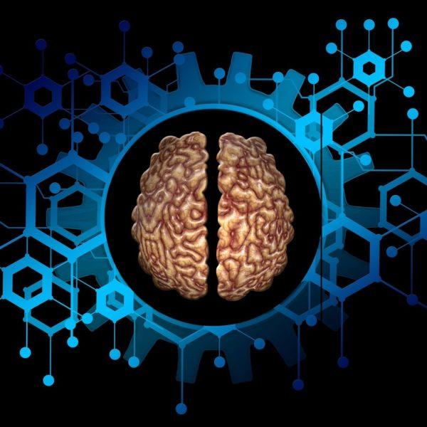 Picture of a brain/neurological - Graphene