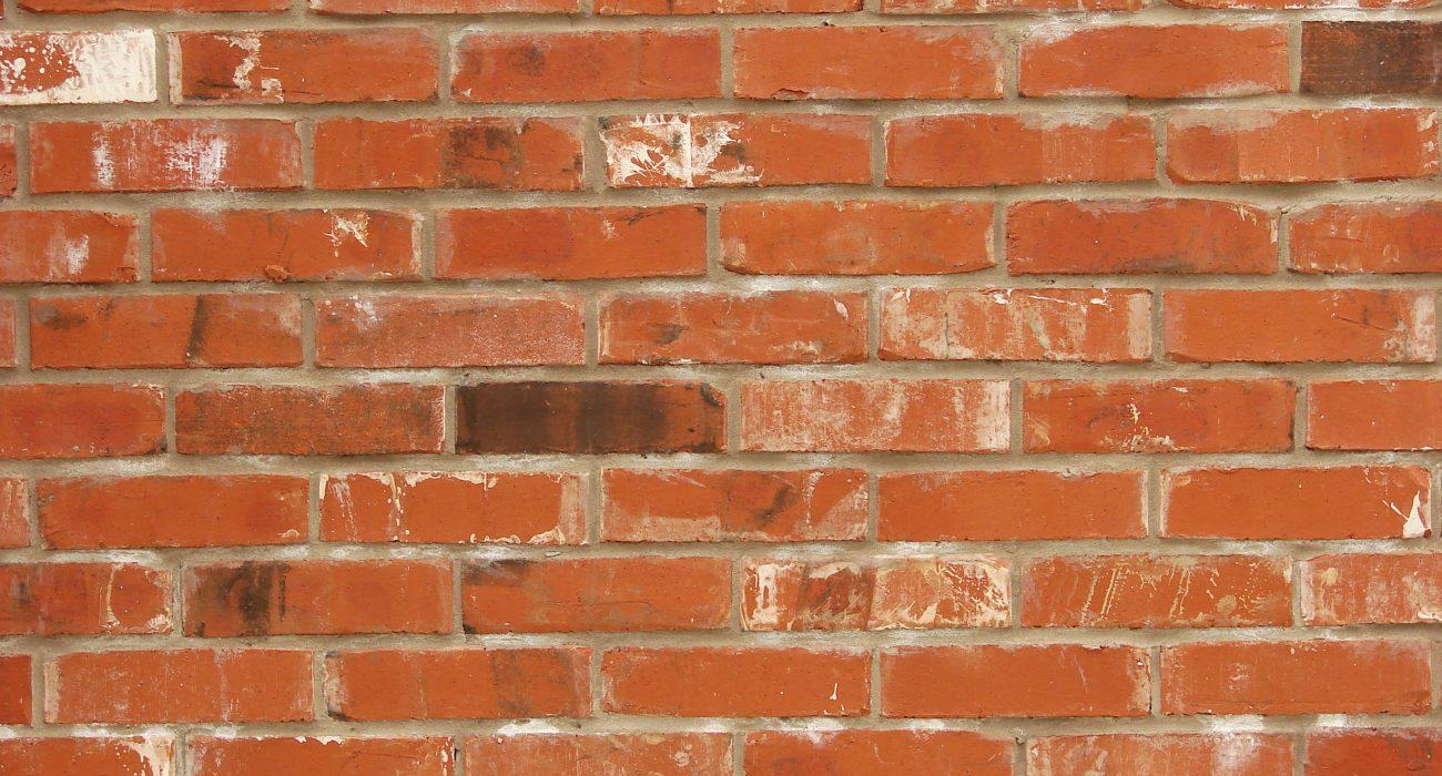 Slipped in through the bricks