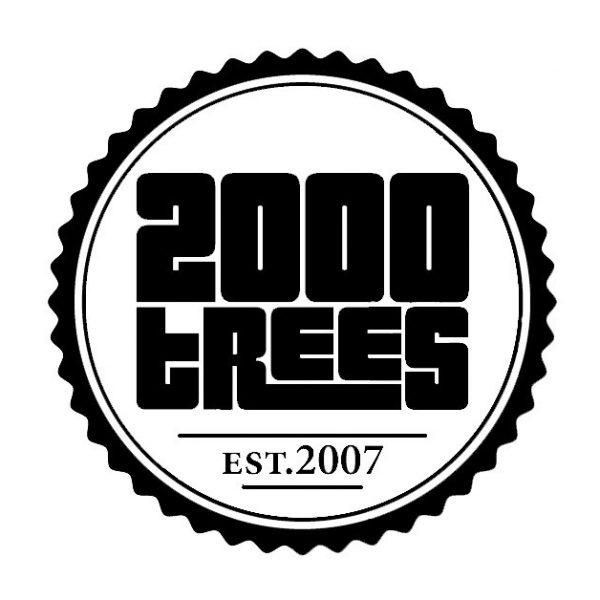 Photo: 2000 Trees festival